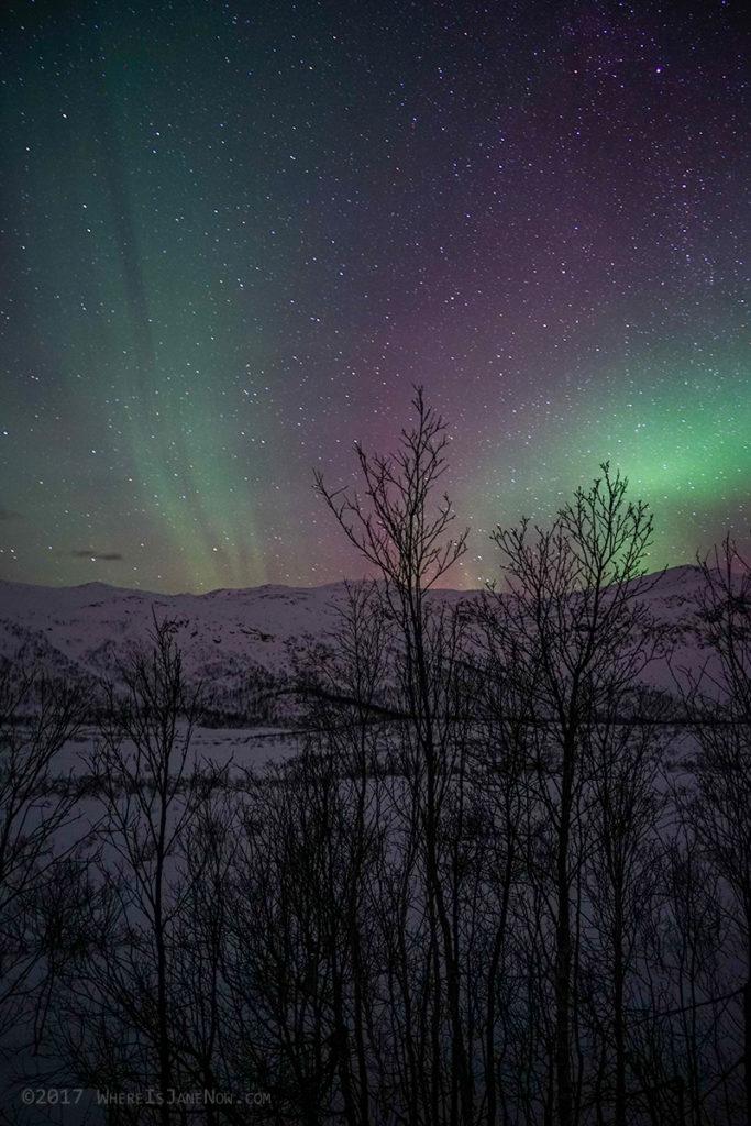 Red Northern lights over Senja